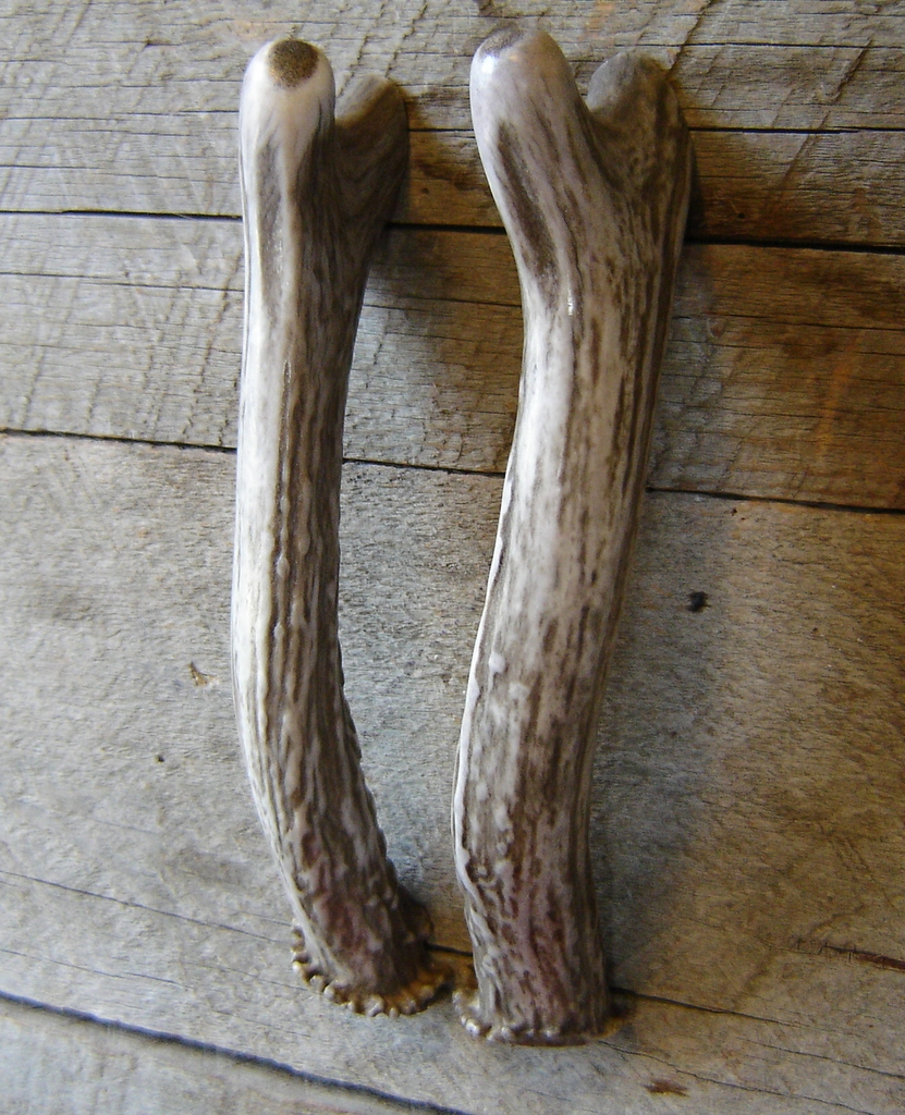 Deer Antler Handles, Cabin Furnishings, Leatherworking